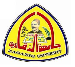 "D. Ashraf al-Shehhi president of Zagazig University in the program, """" happening in Egypt: ""Freedom of opinion is guaranteed"